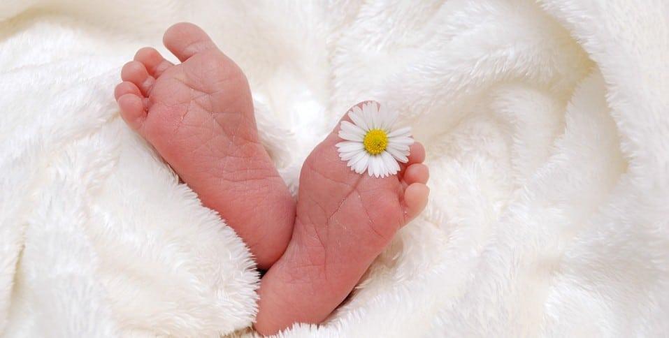 fertilité-stérilité