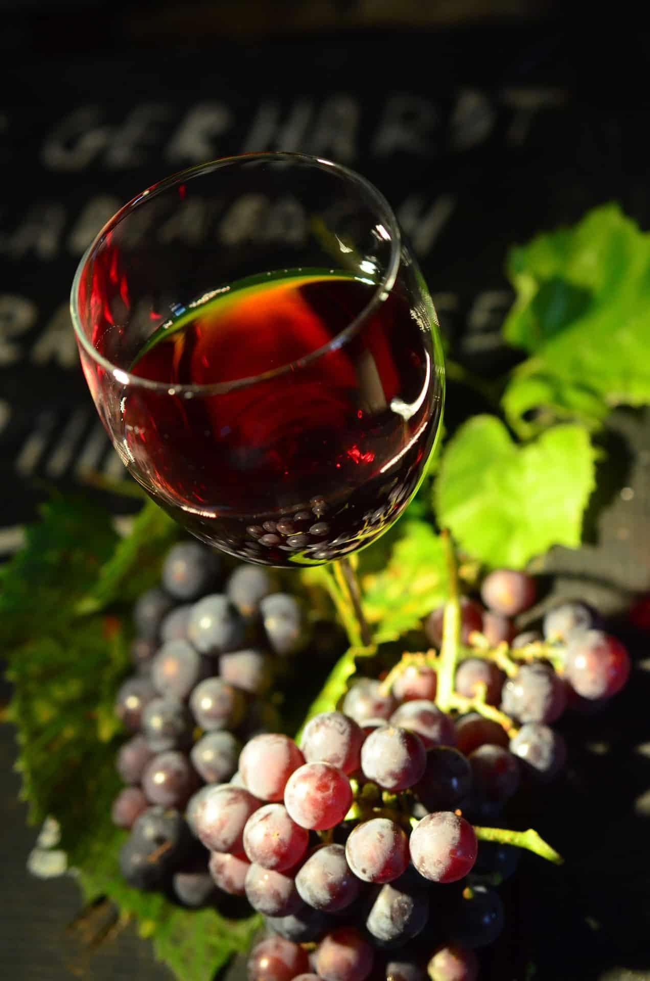 vin_en_biodynamie_vins_etonnants