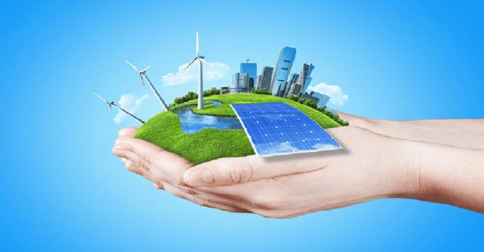 le profil d'Eco-environnement