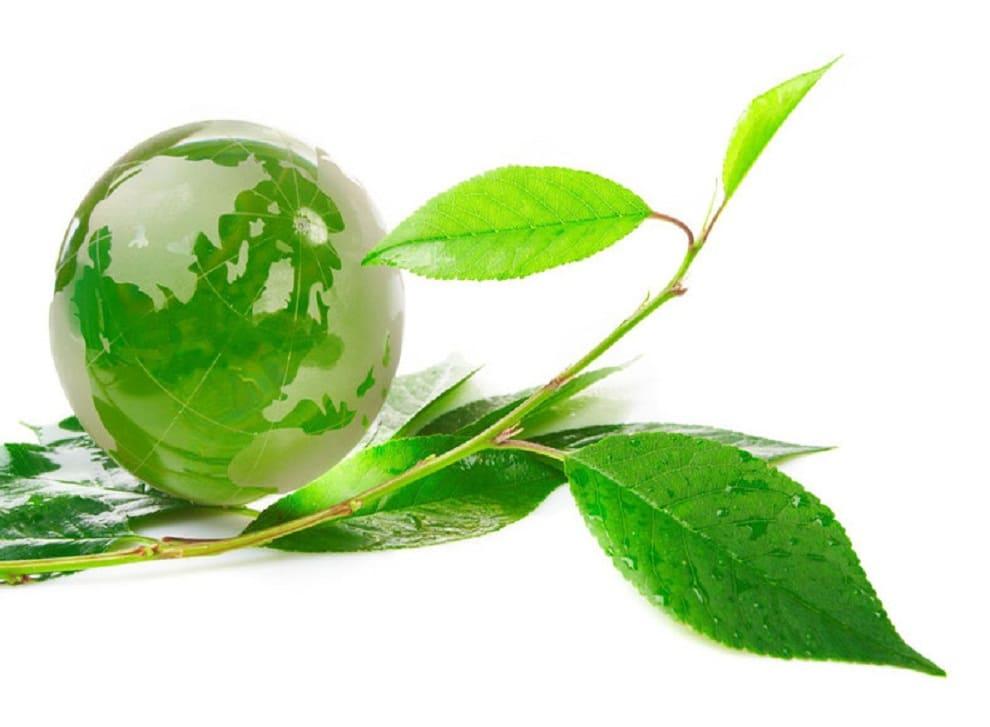 Eco environnement avis