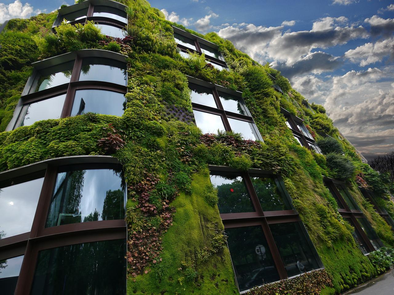 mur végétal extérieur façade immeuble